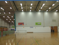 Harvey Hadden Award Winning Sports Lighting